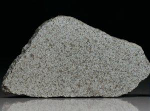 NWA 8095 (25.0 gram)