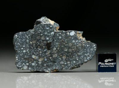 NWA 8323 (11.60 gram)
