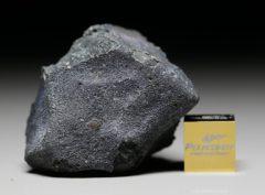 JBILET WINSELWAN (25.40 gram)