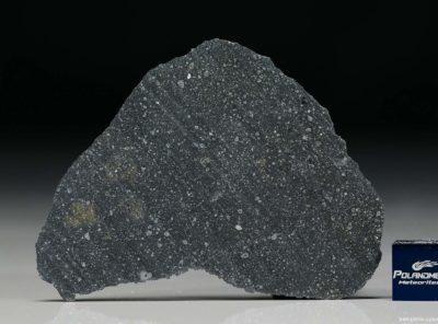 NWA 12184 (8.30 gram)