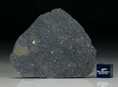 NWA 12184 (9.05 gram)