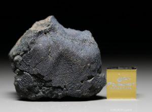 JBILET WINSELWAN (24.58 gram)