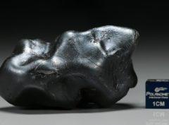 SIKHOTE ALIN (118.0 gram)