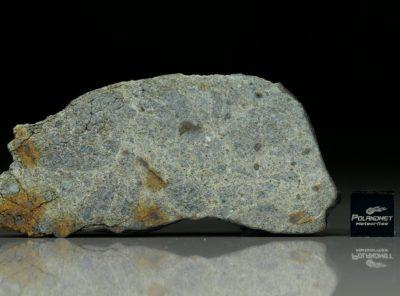 NWA 8322 (21.69 gram)