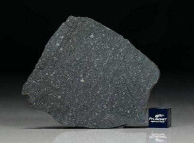 NWA 12184 (11.60 gram)
