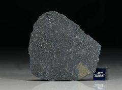 NWA 12184 (11.38 gram)
