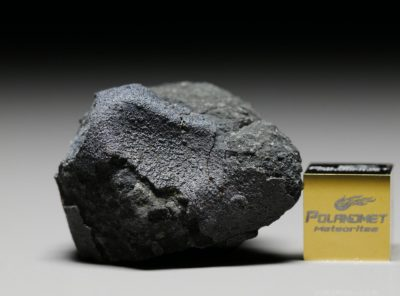 JBILET WINSELWAN (13.99 gram)