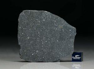 NWA 12184 (12.39 gram)