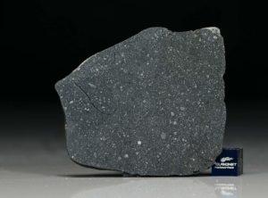 NWA 12184 (12.37 gram)