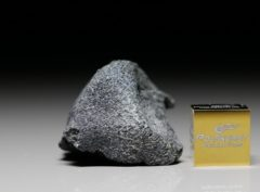 JBILET WINSELWAN (10.50  gram)