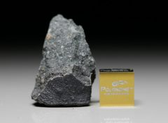 JBILET WINSELWAN (9.39 gram)