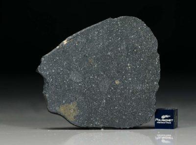 NWA 12184 (12.27 gram)