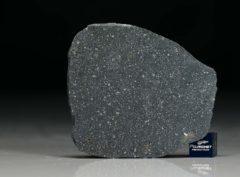 NWA 12184 (12.17 gram)