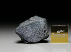 JBILET WINSELWAN (7.07 gram) y)