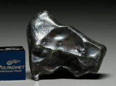 SIKHOTE ALIN (20.0 gram)