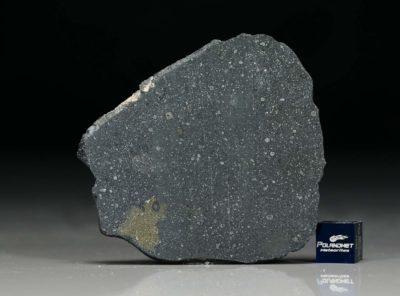 NWA 12184 (10.93 gram)