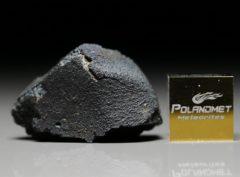 JBILET WINSELWAN (5.35 gram)