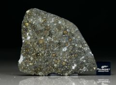 ALLENDE (11.05 gram)