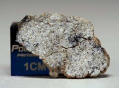 NWA 5219 (0.98 gram)