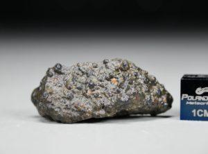 NWA 10671 (7.08 gram)