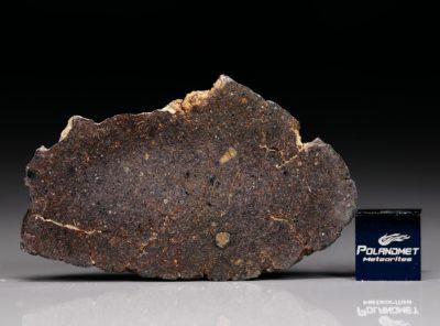 NWA 4781 (11.15 gram)