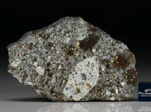 NWA 8646 (85.2 gram)