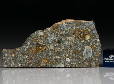 NWA 8646 (8.10 gram)