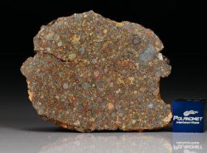 NWA 10296 (14.66 gram)