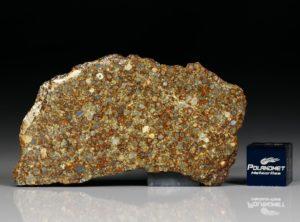 NWA 10297 (9.50 gram)