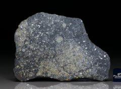 NWA 10377 (35.36 gram)