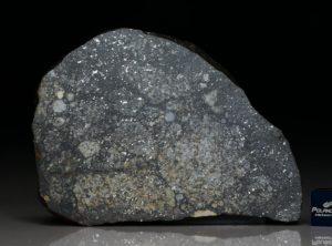 NWA 10377 (44.22 gram)