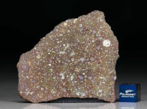 NWA 10378 (13.01 gram)