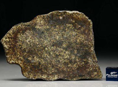 PUŁTUSK (55.0 gram)