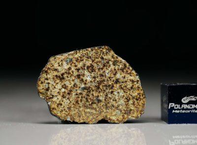 PUŁTUSK (5.50 gram)