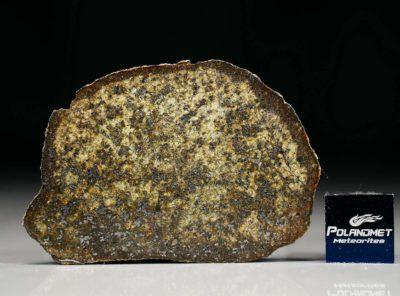 PUŁTUSK (16.85 gram)