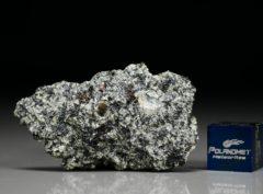 D'ORBIGNY (6.19 gram)