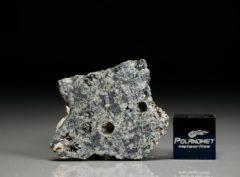 D'ORBIGNY (3.41 gram)