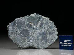 DHOFAR 1988 (2.731 gram)