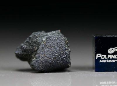 JBILET WINSELWAN (2.88 gram)
