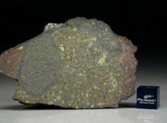 AL HAGGOUNIA 004 (66.85 gram)