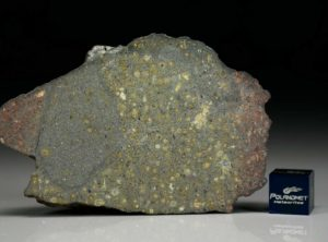 AL HAGGOUNIA 004 (68 gram)