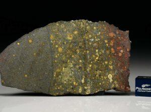 AL HAGGOUNIA 004 (22.4 gram)