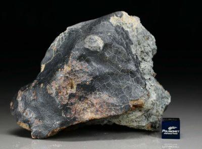 DHOFAR 1658 (460.1 gram)