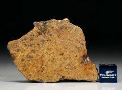 DHOFAR 1658 (11.26 gram)