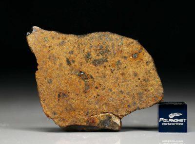 DHOFAR 1658 (12.56 gram)