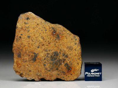 DHOFAR 1658 (10.66 gram)
