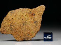 DHOFAR 1658 (13.54 gram)