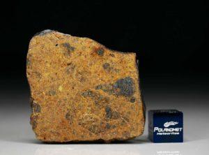 DHOFAR 1658 (10.30 gram)