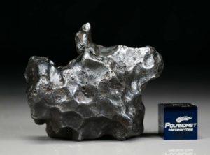SIKHOTE ALIN (67.4 gram)