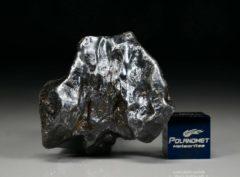 SIKHOTE ALIN (31.0 gram)